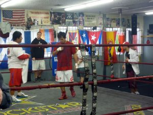 Wildcard Boxing Club – Revisión de Gimnasio